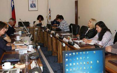 Pequeños productores de berries de Chimbarongo se reúnen con Comisión de Agricultura