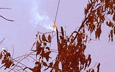 Poder judicial Corte de Apelaciones de Rancagua condena a empresa eléctrica por incendio forestal