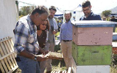 Productores apícolas de la Región participan de encuentro con importadores canadienses