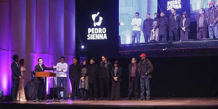 Consejo de la Cultura abre convocatoria para los Premios Pedro Sienna 2017