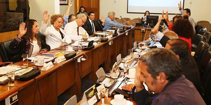 Consejo regional aprueba $250 millones para agricultores afectados por incendios forestales