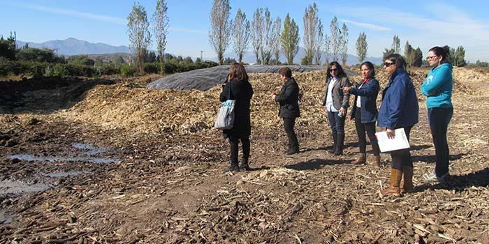 Medio Ambiente logra que empresa Alifrut retire desechos depositados cercano a colegio San Esteban