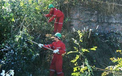 Minuto Verde colabora con la Municipalidad de San Fernando en la limpieza de canal La Palma