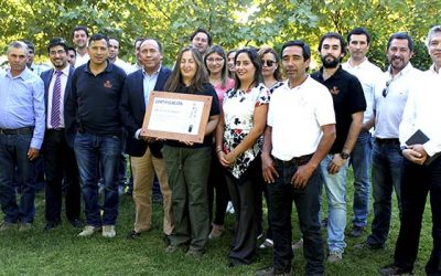 Senda Nancagua certifica a Viña Luis Felipe Edwards