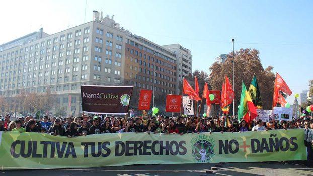 Chile marcha para exigir una mejor regulación del cannabis