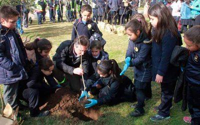 Con la plantación de árboles se celebra el Día Mundial del Medio Ambiente en Rancagua
