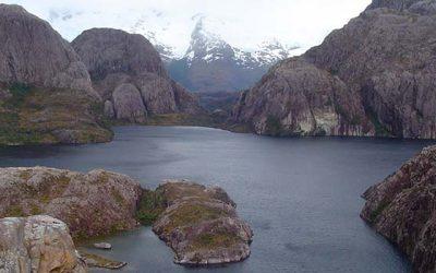 Red de parques patagónicos aumenta hábitat de especies con problemas de conservación