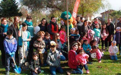 La Conaf participa de iniciativa municipal de plantación de árboles en Rancagua