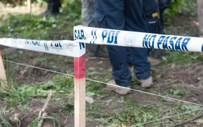 PDI detiene a integrantes de una red de peleas de gallos en Mostazal