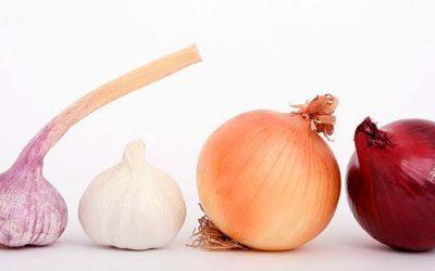 Productores de ajo y cebolla de OHiggins innovan con producto gourmet