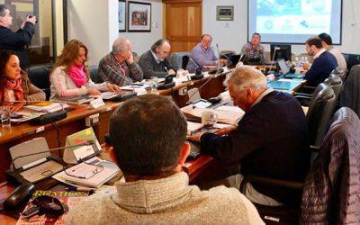Comisión de Agricultura del Core y productores activarán mesa regional apícola para potenciar el rubro