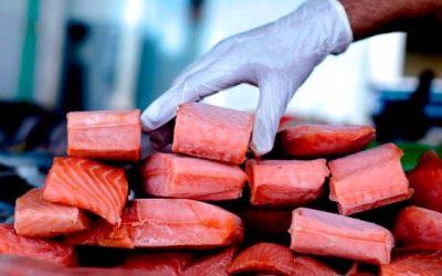 Sofisticadas herramientas de optimización en industria salmonera podrían impactar en la industria internacional