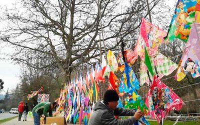 Labocar lanza campaña preventiva para evitar accidentes en estas fiestas patrias