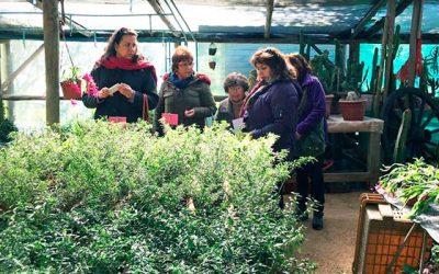 Mujeres emprendedoras la llevan en nueva ruta turística en Rapel