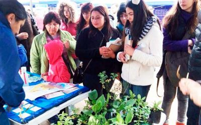 En Santuario de la Naturaleza Bosque de Calabacillo se celebró día nacional del medio ambiente