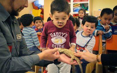 Niños del jardín infantil de Hospital Regional disfrutan de muestra educativa de Parque Zafari