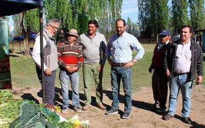 O'Higgins celebro su décimo día del feriante en Rancagua