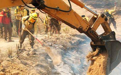 La Conaf continúa el reclutamiento de personal para brigadistas forestales