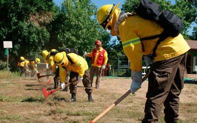 Conaf capacita a brigadistas forestales en combate de incendios en OHiggins