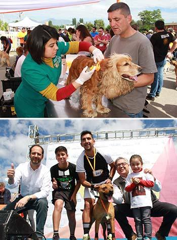 Familias completas corrieron junto a sus perros por las calles de Rancagua