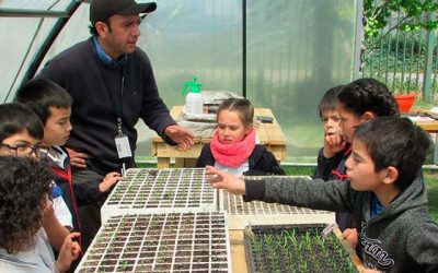 Invernadero apoya trabajo académico de los colegios