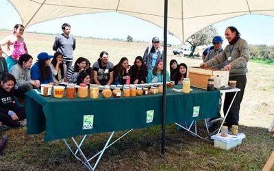 Más de 500 personas asistieron este año al Día de Campo INIA Hidango