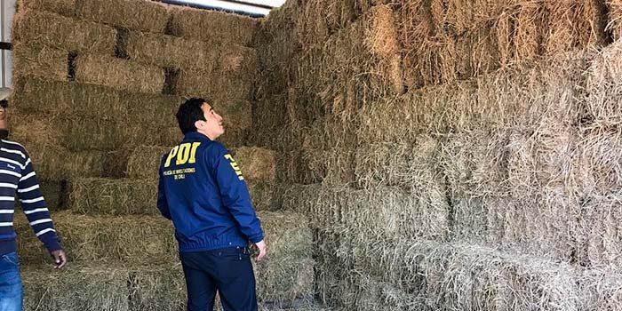 PDI recupera 1500 fardos tras investigación por apropiación indebida en Rancagua