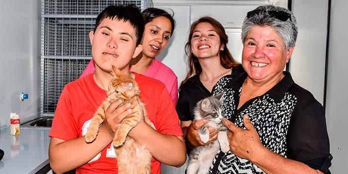 Campaña de desparasitación para perros y gatos en San Fernando
