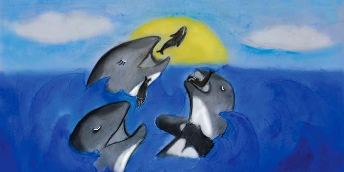 PAR Explora de la Conicyt OHiggins lanza cuento Toni el delfín