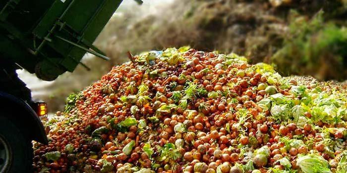 Presentan plan de acción para la reducción de desperdicios de alimentos en Chile