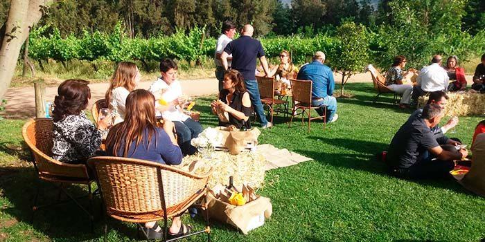 Programa del Sernatur impulsa productos turísticos innovadores en el Valle de Colchagua