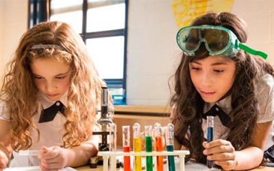 Académica UOH es elegida como mentora de programa de la Academia de Ciencias de Nueva York