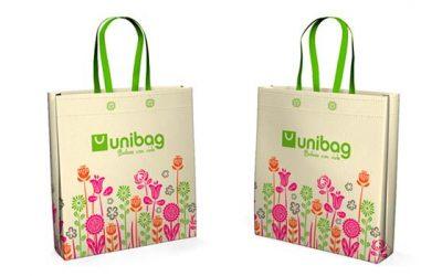 La opción que se impone para eliminar el uso de bolsas plásticas en las playas chilenas