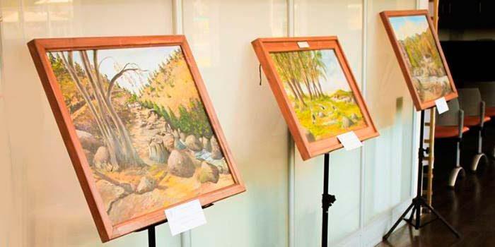 Abierta exposición de destacada artista Palmillana