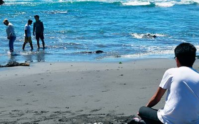 Pescadores y turistas valoran reapertura de Topocalma