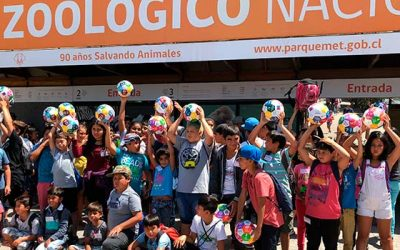 Verano entretenido para 100 niños de la comuna de Lolol