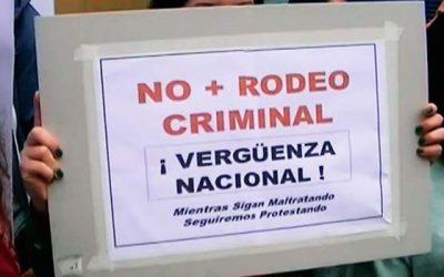 Animalistas protestan contra el rodeo en Rancagua