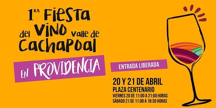 Hasta Providencia llegará la Fiesta del Vino Valle del Cachapoal