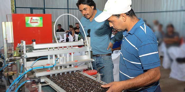 Pequeños productores hortícolas inauguran moderna Plantinera en San Vicente de Tagua Tagua