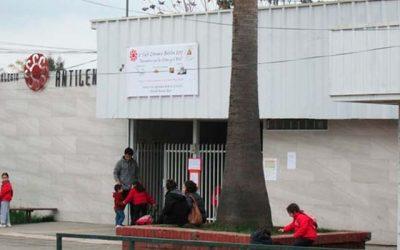 Administrador Provisional será nombrado para caso colegio Antilén de Rengo