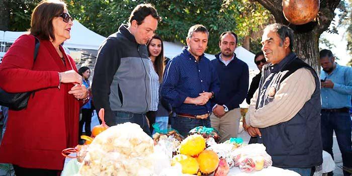 Intendente conoce el trabajo de pequeños productores presentes en la Feria Prodesal de San Fernando