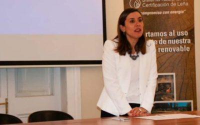 Región de OHiggins realiza la primera Sesión del Consejo Local de Certificación de Leña