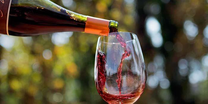 Concurso del Sernatur busca experiencias y productos que aporten al turismo desde la gastronomía y el mundo del vino