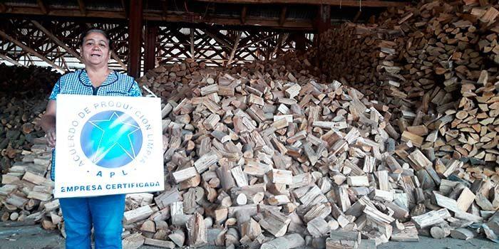 Estudio de precios y seguridad en el mercado de la leña en la Región