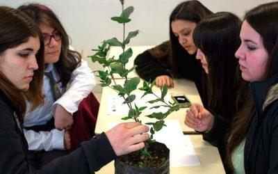 PAR Explora regional y Red de Investigadoras realizarán IV Encuentro Mujer y Ciencia