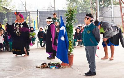 Durante julio se realizará primera Consulta Indígena de Educación