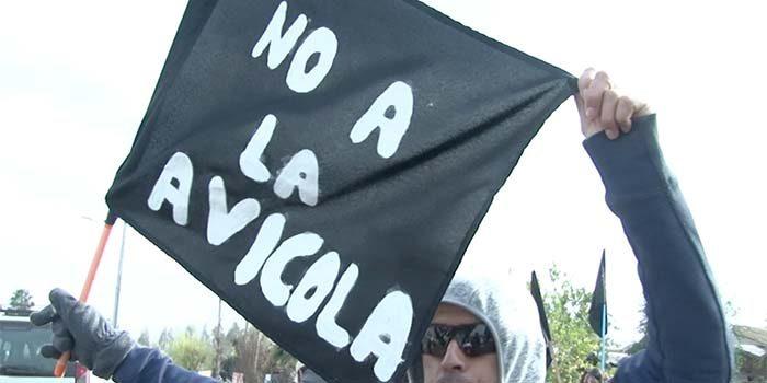 Vecinos de Valle Hermoso de Palmilla rechazan construcción de planta avícola en el sector
