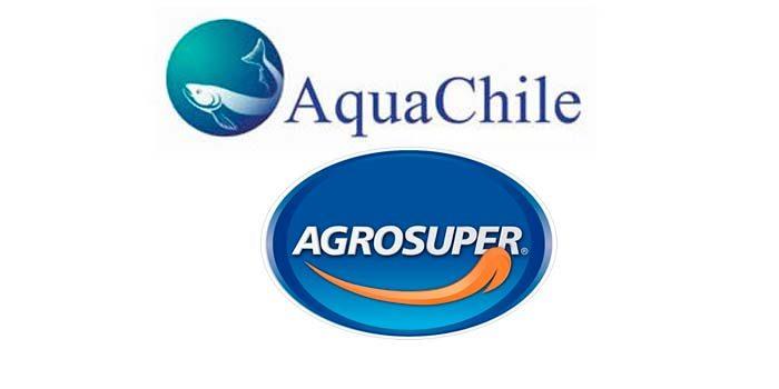Agrosuper compra 67% de salmonera Aquachile