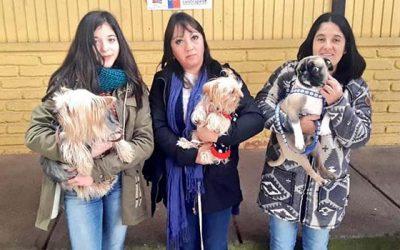 Anuncian implementación de programa de tenencia responsable de mascotas para Malloa
