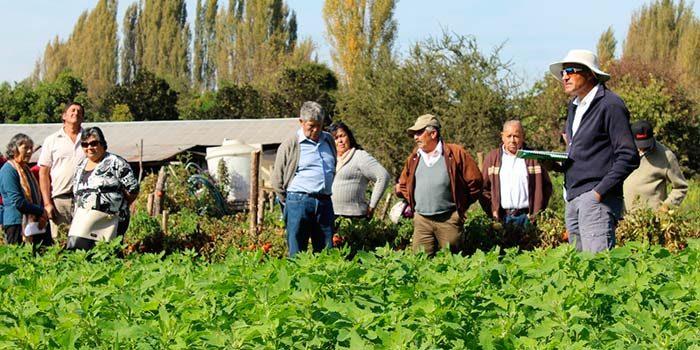 Chile caracteriza Sistema Nacional de Extensión Rural